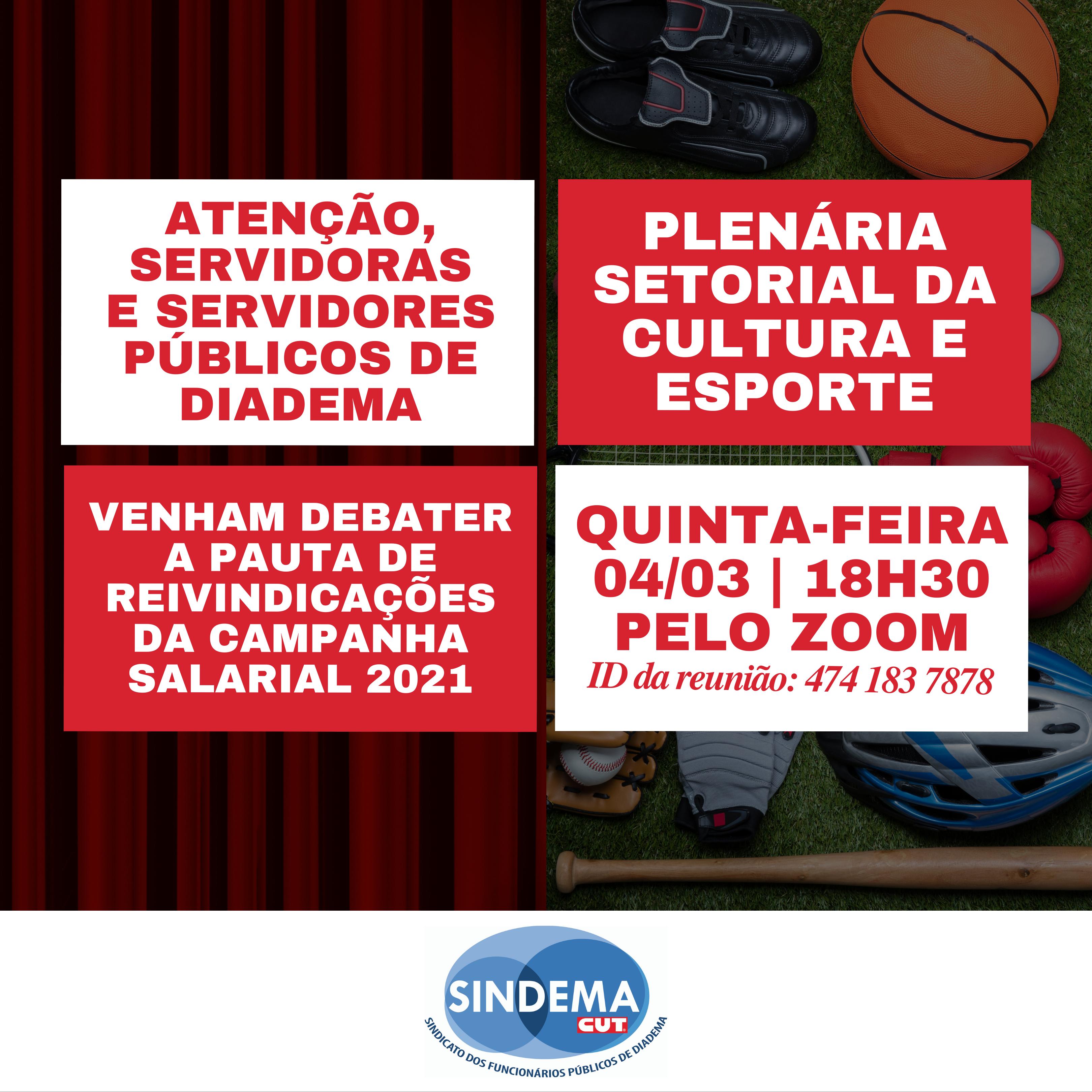 Plenária setorial Cultura e Educação:  campanha salarial 2021.