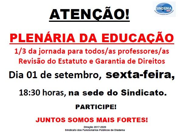 Plenária da Educação